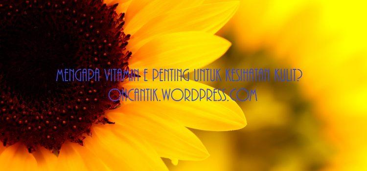 Vitamin Untuk Kulit: Apakah Ciri Vitamin E Yang Bagus Untuk Kulit?