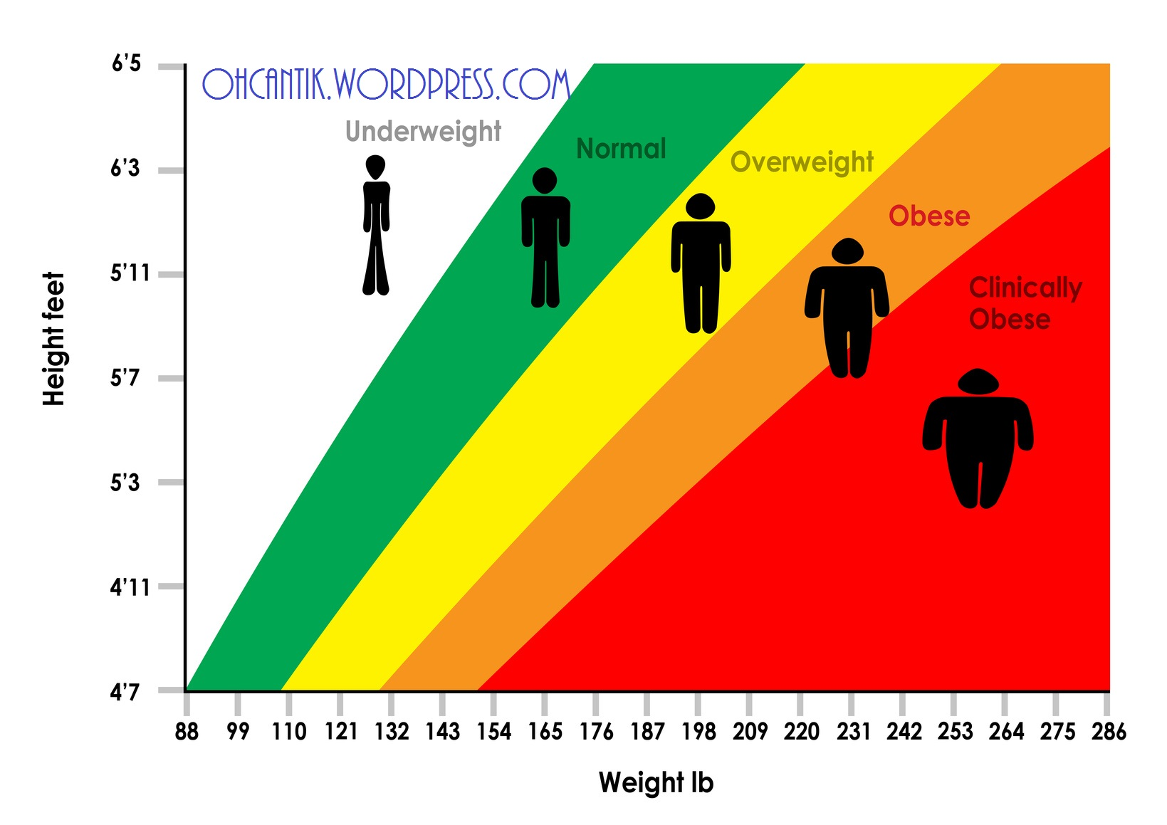 Body Mass Index Chart - Feet and Pounds