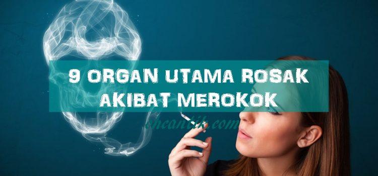 Penyakit Akibat Merokok: Arthrithis, Strok & Kanser Paru-paru Antara Penyakit Berpunca Daripada Merokok