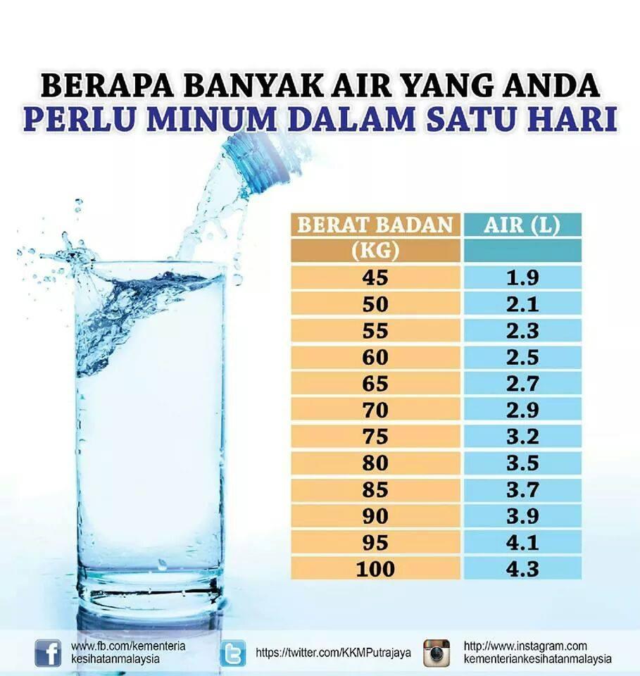 manfaat air kepada kesihatan