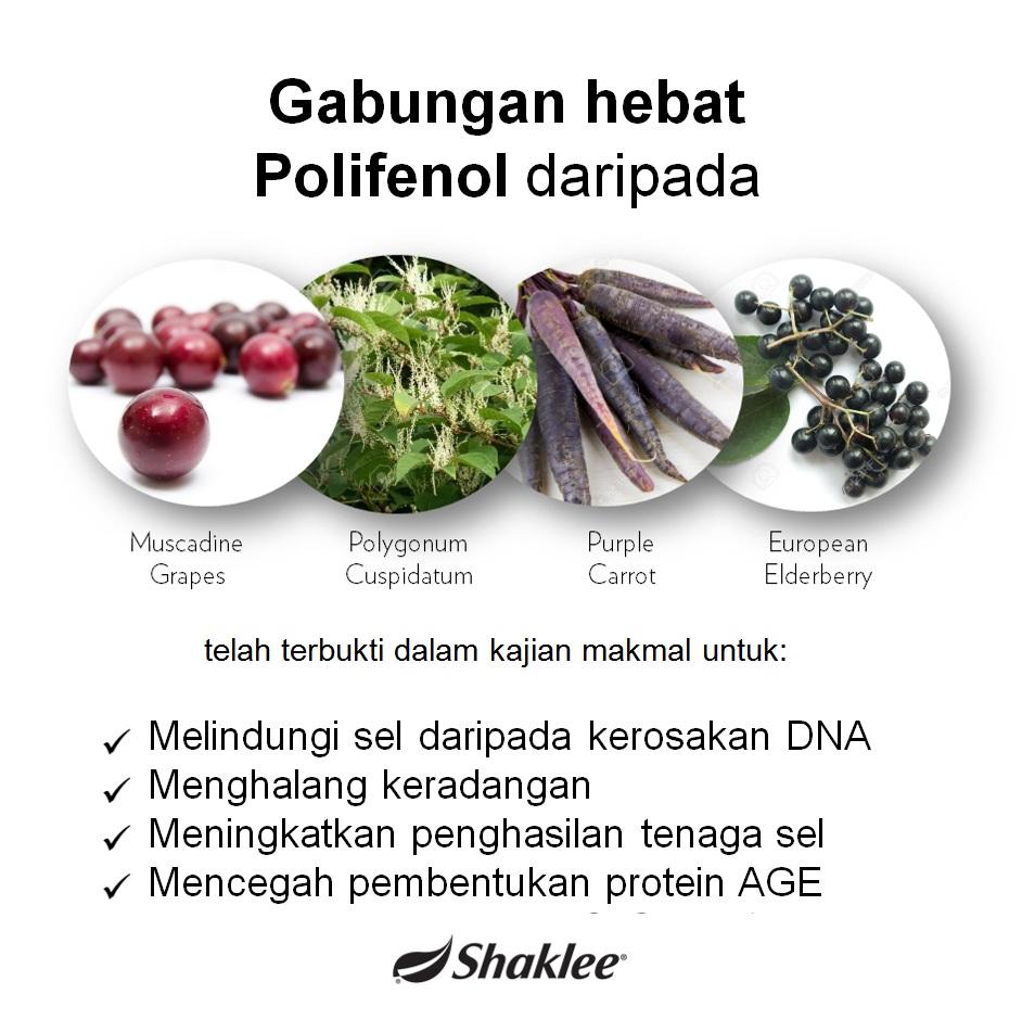 khasiat resveratrol